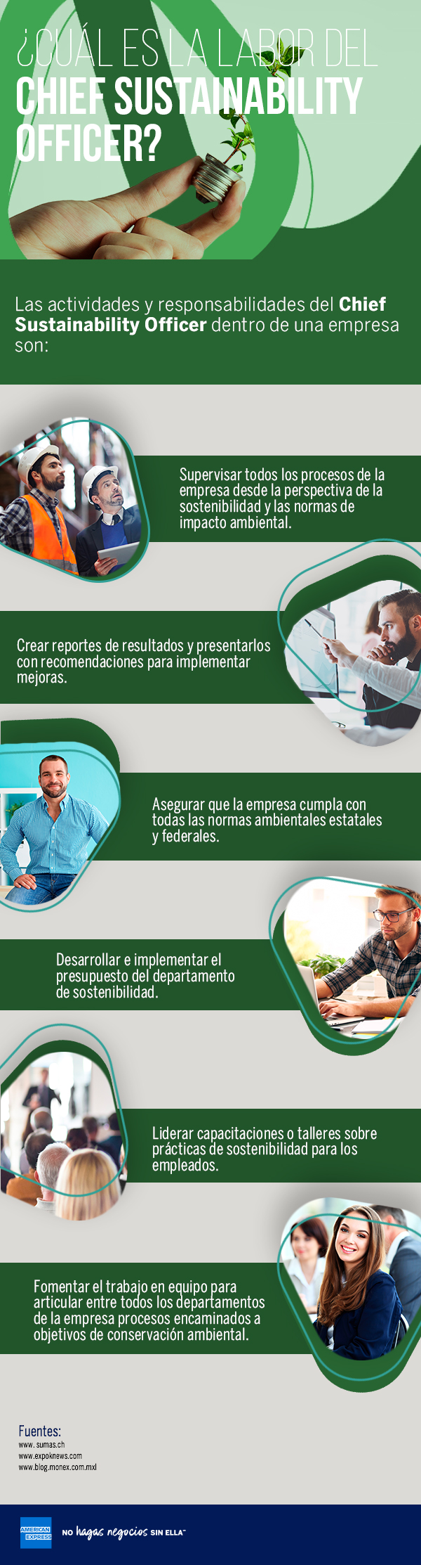 ¿Cuál es la labor del Chief Sustainability Officer?